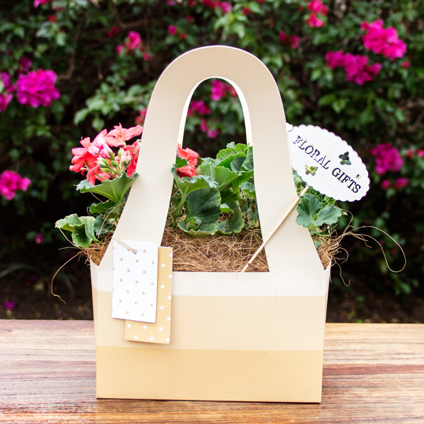 70060759 - Gift Flowering Bag