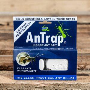Antrap indoor Ant bait