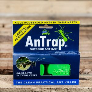 Antrap Outdoor Ant bait