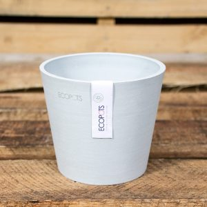 Eco Amsterdam WG 13cm pot