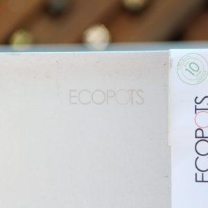 Eco Sankara HWG  75cm pot