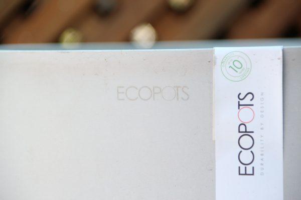 Eco Sankara HWG 75cm pot 2