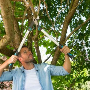 Gardena – Energy Cut Pruning