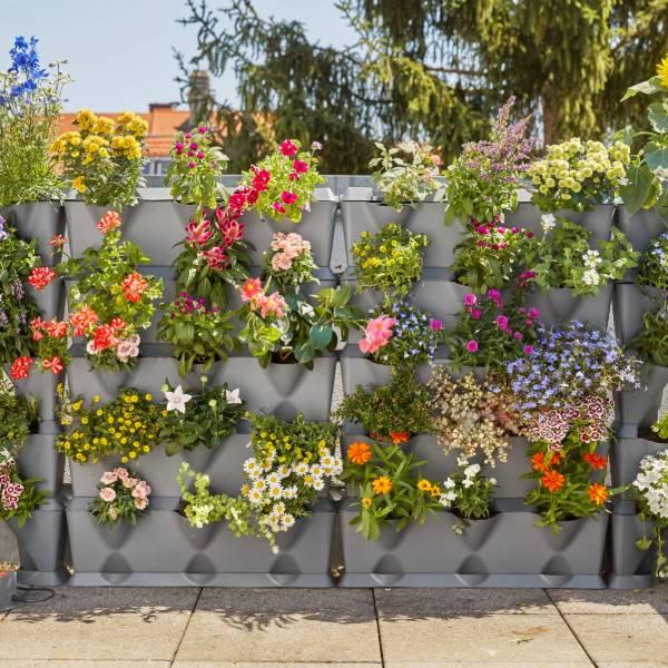 13150-20 (Gardena City Gardening Vertical Gardening Basic Set) LS PIC (5)