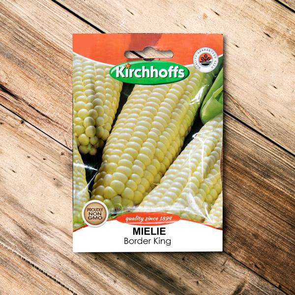 70063037 - Kirchhoffs -Mielie Border King