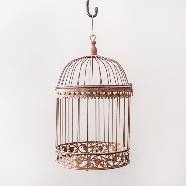 70058398 - Da Birdcage Large