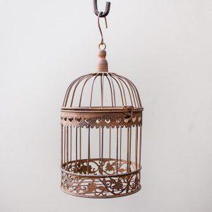 Da Birdcage Medium