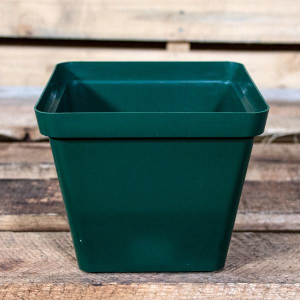 10006120 - Plastic Pot SQ 17cm
