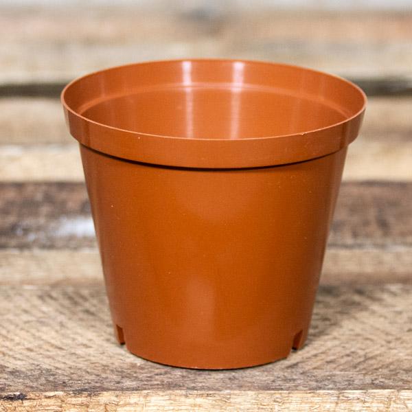 42481200 - Plastic Pot 10cm (2)
