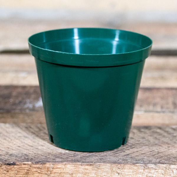 42481200 - Plastic Pot 10cm