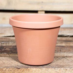 Sebor Super Pot 15cm