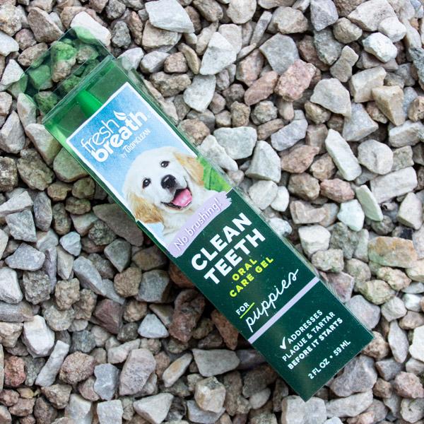 70038293 - Marl - Fresh Breath Puppy