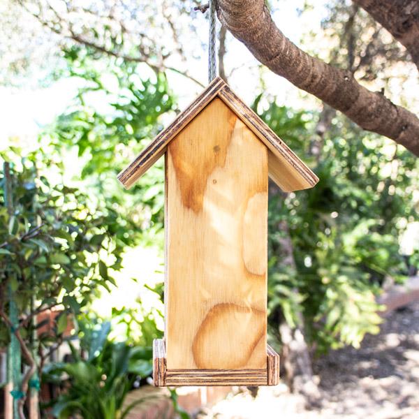 70049746 - GP Seed House Small (3)