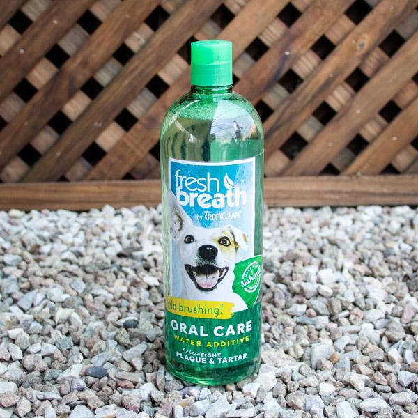 70058293 - Marl -Fresh Breath Puppy oral care