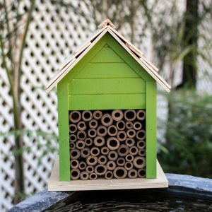 TAS Insect Hotel