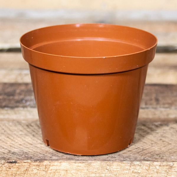 80005475 - Plastic Pot 12cm (3)