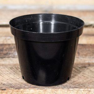 Plastic Pot 12cm