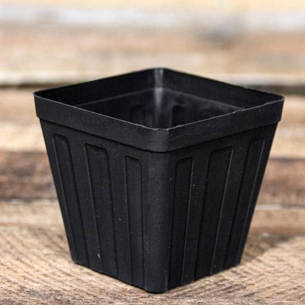 80005977 - Plastic Pot SQ 8cm