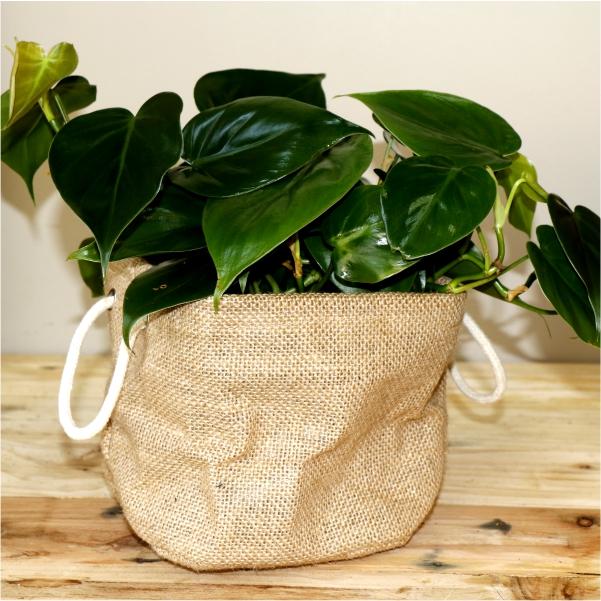 70050017 -Hessian Bag with Sweatheart Vine