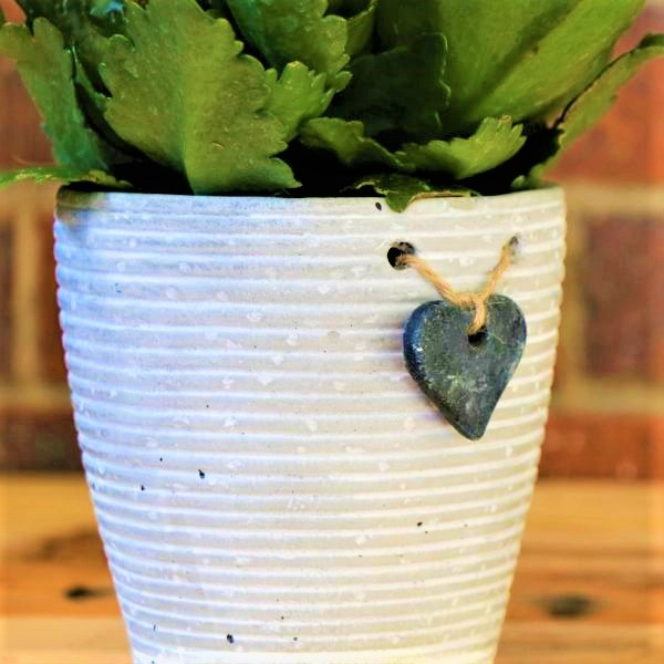 70063251 - White Striped pot with Kalanchoe plant (2)