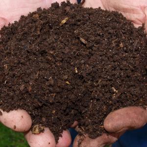 Compost and Fertiliser
