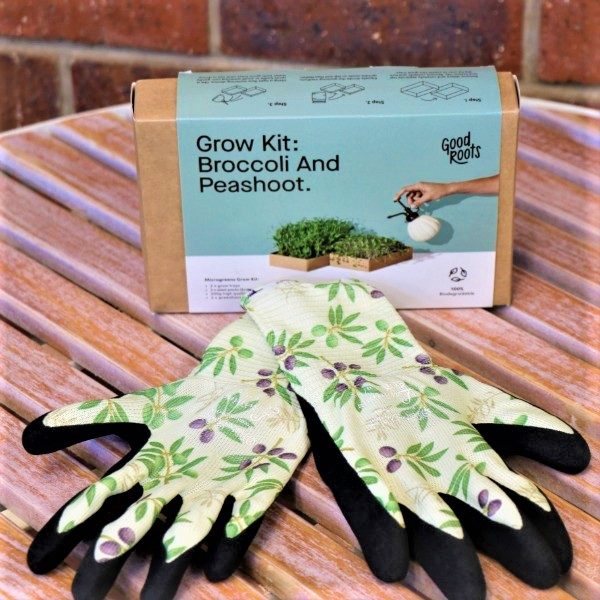 70063493 - Microgreen kit-Broccoli & Pea Shots With garden Gloves