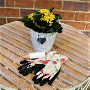 White Stripped Pot With kalanchoe ,Waterplug Stick And Garden Gloves