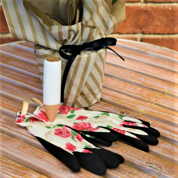 70063808 - Wrapped Money Tree with Waterplug Stick And Garden Gloves (2)