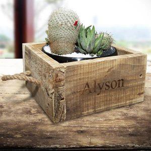 Personalised Cacti planter