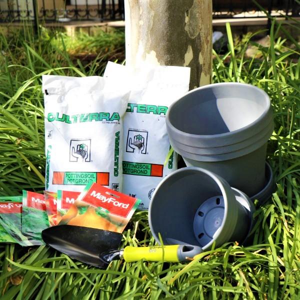 70063909 - Set of 3 Sebor 15cm & 20cm Pot kalahari with Potting Soil , Mayford Seeds And Garden Trowel