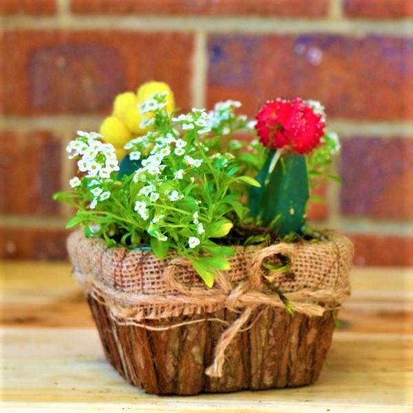 70063259 - Hessian Palnter with mixed plants