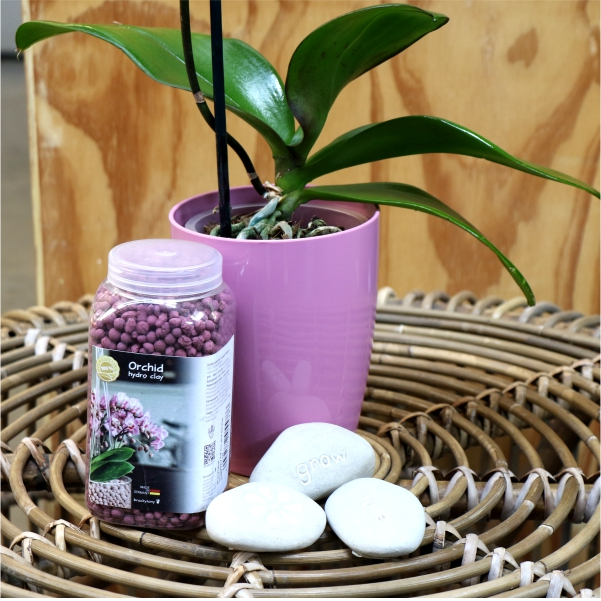 70063871 - Pink Phalaenopsis with message stone,Orchid pot and Brockytony (2)