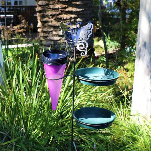 70063875 - Chique butterfly With rain gauge And bird seeds