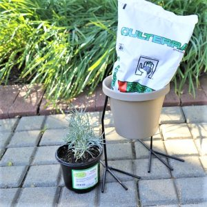 Sebor Pot with Chicken Feet Stand, Potting Soil and Healthy Living Herb