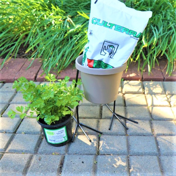 70063905 - Sebor Pot with Chicken feet Stand, Potting Soil and Living herb