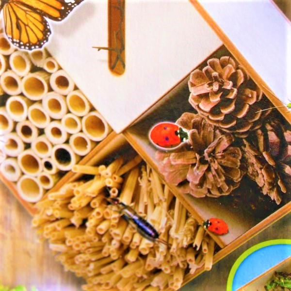 70063288 - Explore Insect hotel (2)