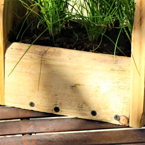 70064370 - Wooden box with Chives (2)