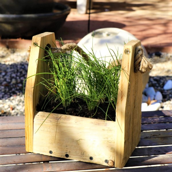 70064370 - Wooden box with Chives