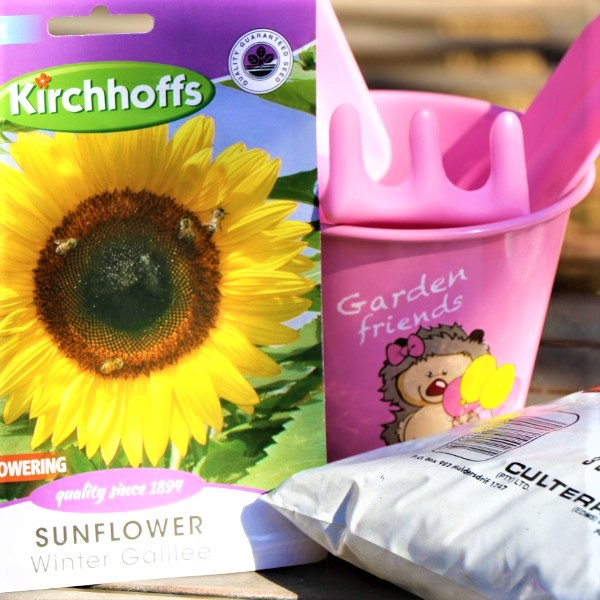 70064725 - Kiddies Garden Bucket With Potting Soil, Plastic tool set and Packet of seeds (2)