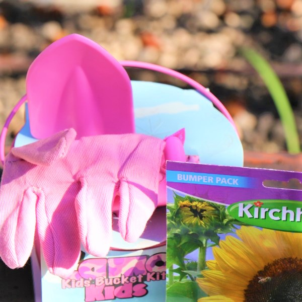 70064731 - Tool Set with Bucket , Potting Soil ,Gloves And two packet of Seeds (4)