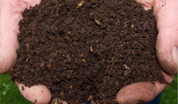Compost And Fertilizer